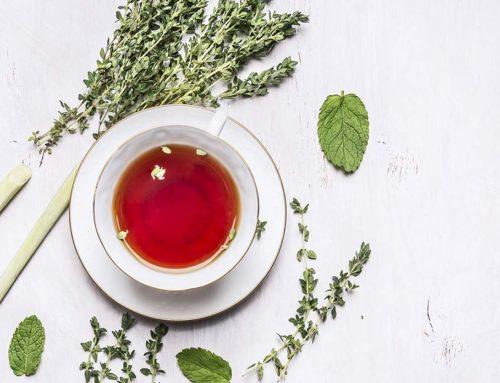 Best Tea Flavors
